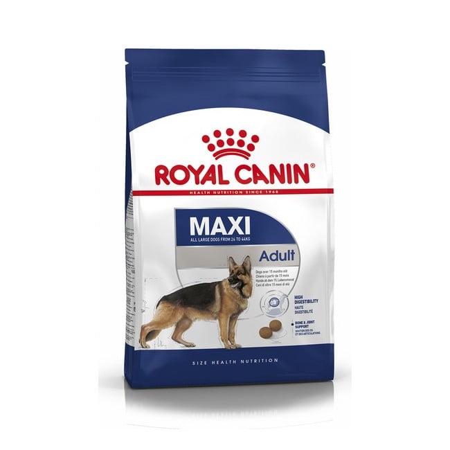 Royal Canin Shn Maxi Adult Büyük Irk Yetişkin Köpek Maması